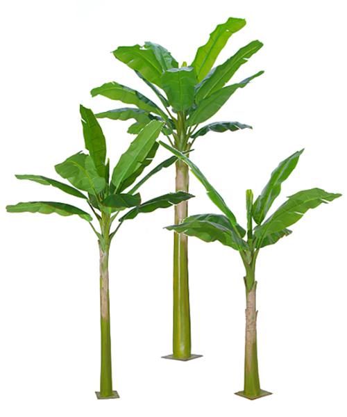 四杆长生叶-哪里能买到高质量的仿真芭蕉