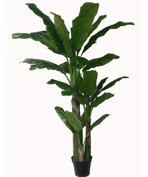 宁波仿真喜林芋|高质量的人造芭蕉绿韵工艺供应