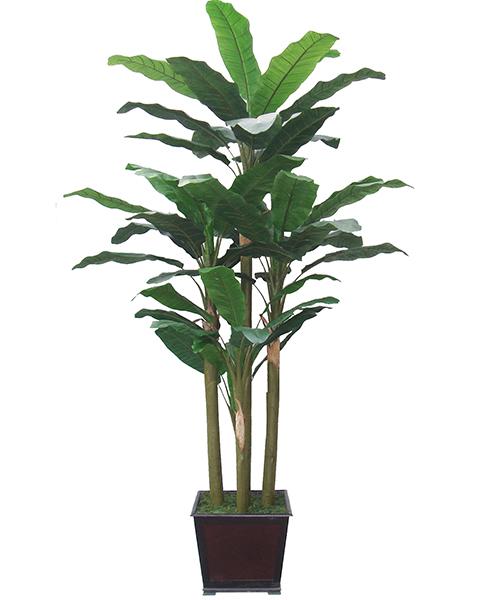 寧波仿真喜林芋-綠韻工藝實惠的人造芭蕉出售