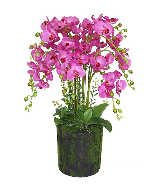 舟山仿真植物工廠-廣東銷量好的仿真植物工廠推薦