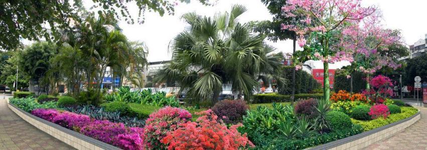 供应江西优惠的江西生态农业园林花卉种子_口碑好的江西生态农业园林工程