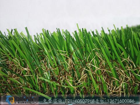 物超所值的人工草皮在哪里可以买到,人造草坪制造厂家