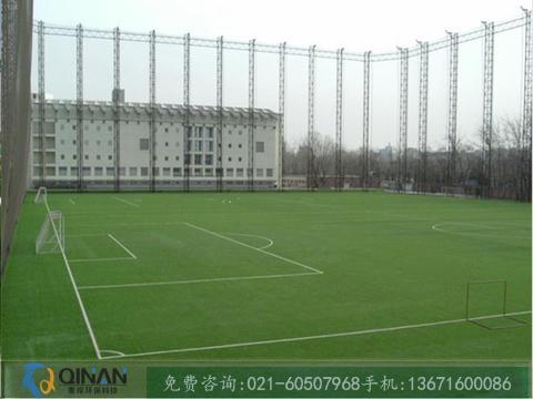彩色人造草坪_上海市销量好的人造草坪足球场供应