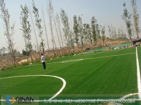 热卖人造草坪足球场推荐 人造草足球场地