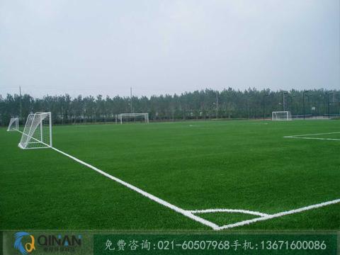 塑胶足球场|划算的人造草坪足球场品牌推荐