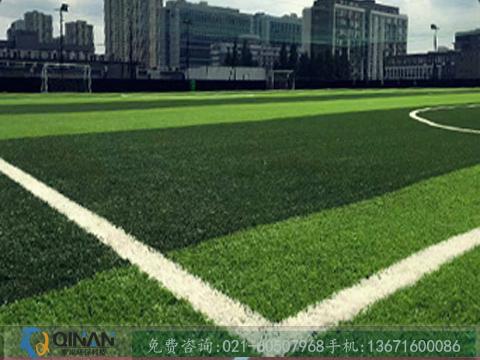 秦岸环保科技供应物超所值的人造草坪足球场,七人制足球场工程