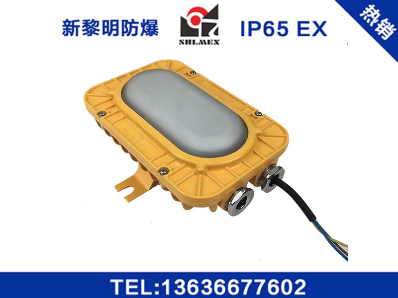 新黎明防爆免维护LED照明灯安装方式-品牌好的LED防爆灯在上海哪里可以买到