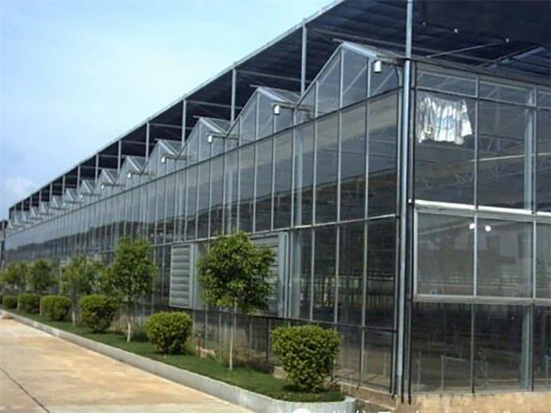 智能连栋温室建设-智能连栋温室价格范围