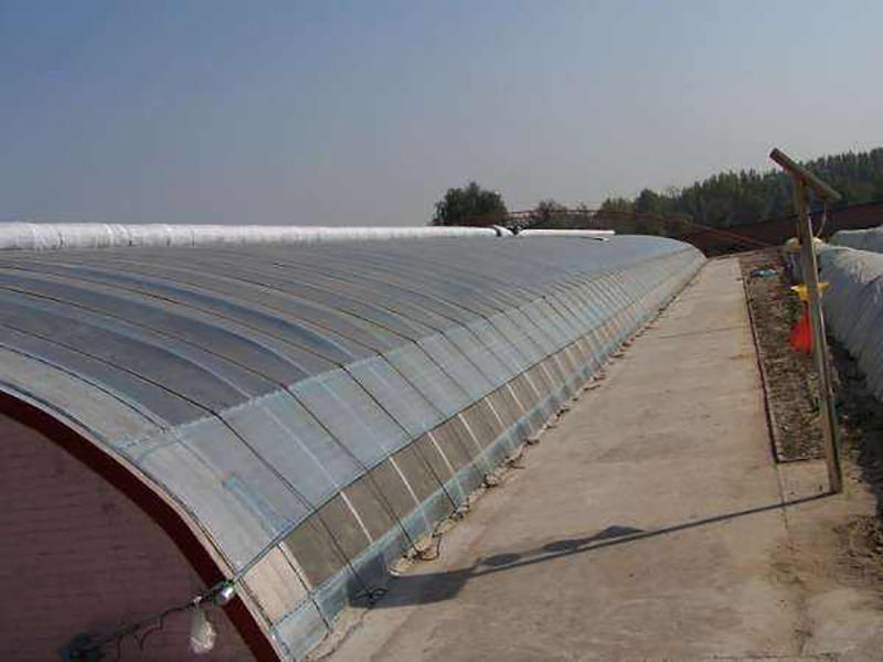 棚膜连栋温室-哪里有提供口碑好的温室大棚