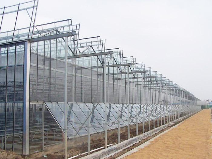 智能温室哪家好-供应潍坊质量好的智能温室大棚