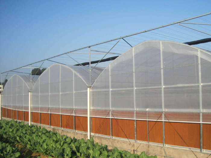 山东温室工程|潍坊具有口碑的温室工程供应