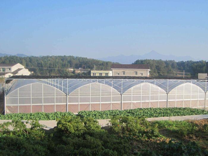 河北温室工程承接-浩源温室工程出售实用的温室工程