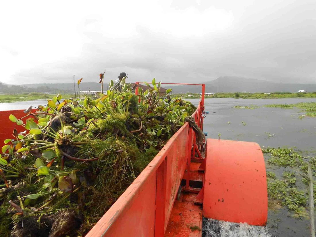水葫芦打捞船