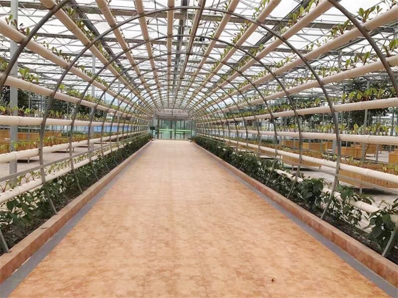 江西观光农业公司|靠谱的观光农业公司