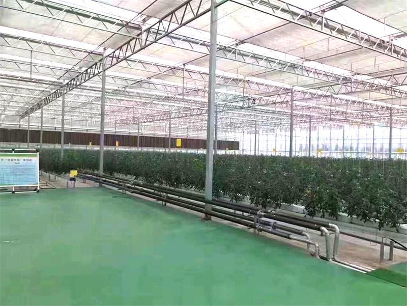 富硒农业造价-潍坊品牌好的富硒农业用具提供商