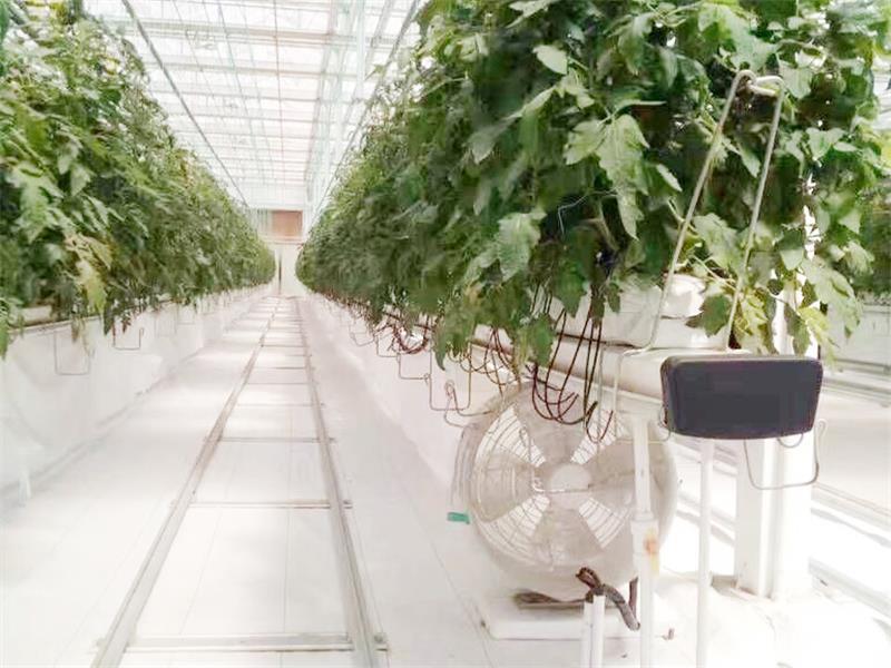 四川生态农业建设-物超所值的生态农业用具推荐