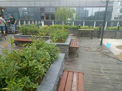 郑州道路绿化工程