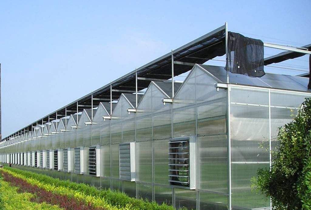 智能温室大棚-报价合理的智能温室推荐