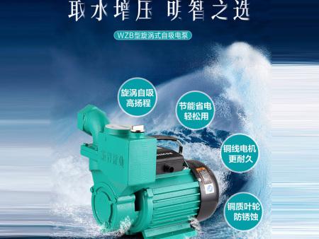 新标水泵供应价格合理的污水处理泵-不错的污水处理泵批发