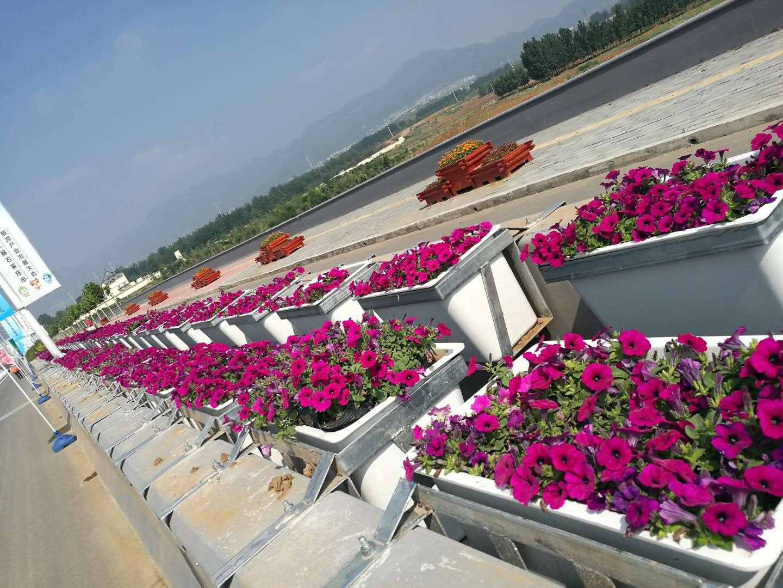 高架玻璃钢花盆供销 实惠的玻璃钢高架花盆哪里有