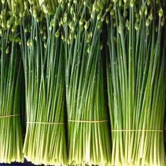 经验丰富的锦茂餐饮食堂承包优选长沙锦茂餐饮管理-专业蔬菜配送