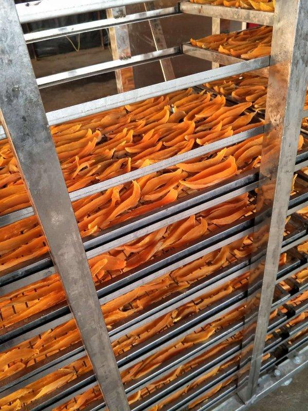煙薯25薯干市場行情_采購煙薯薯干就找坤益紅薯種植