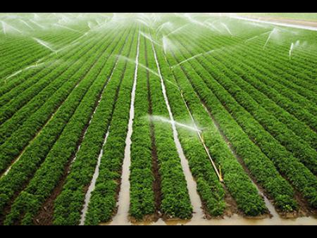 兰州喷灌机|甘肃园林喷灌设计|兰州喷灌设计|甘肃喷灌设计