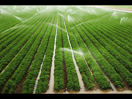 兰州喷灌千赢国际电脑网页版工程-兰州喷灌机-兰州园林喷灌设计-甘肃喷灌机