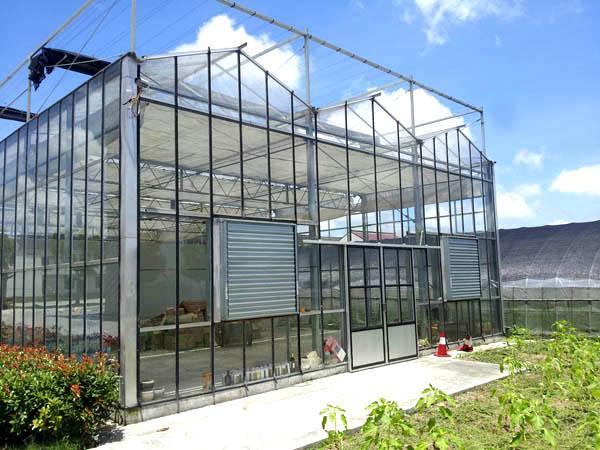 植物工厂 建设植物工厂哪家好 格润温室公司