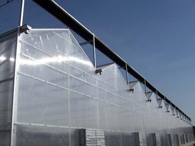 PC板連棟溫室建設-PC板連棟溫室當選馨飛花卉苗木