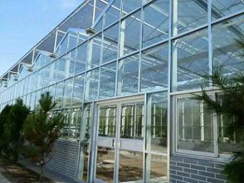 觀光溫室工程承建-山東高質量的溫室大棚