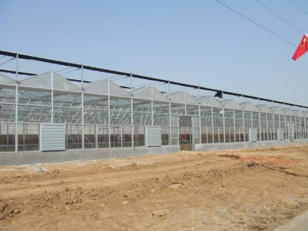 智能溫室工程-哪里有提供好用的連棟溫室