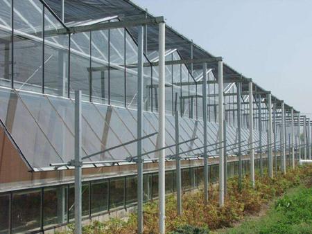 阳光板温室价格,阳光板温室哪家好,阳光板温室