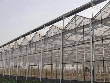陽光板溫室造價_優良陽光板溫室選森瑞溫室工程