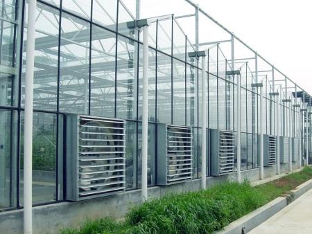 进行蔬菜温室大棚建设时要合理设计采光