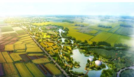 甘肃湖泊绿化设计_成都可靠的环保水务合作