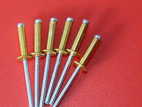 抽芯拉鉚釘廠家-想買實惠的拉鉚釘-就來張貴龍異型鉚釘
