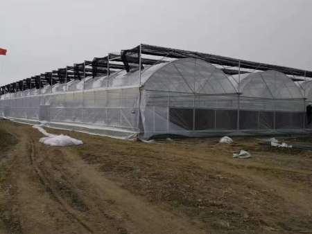 玻璃温室大棚秋季换膜注意事项