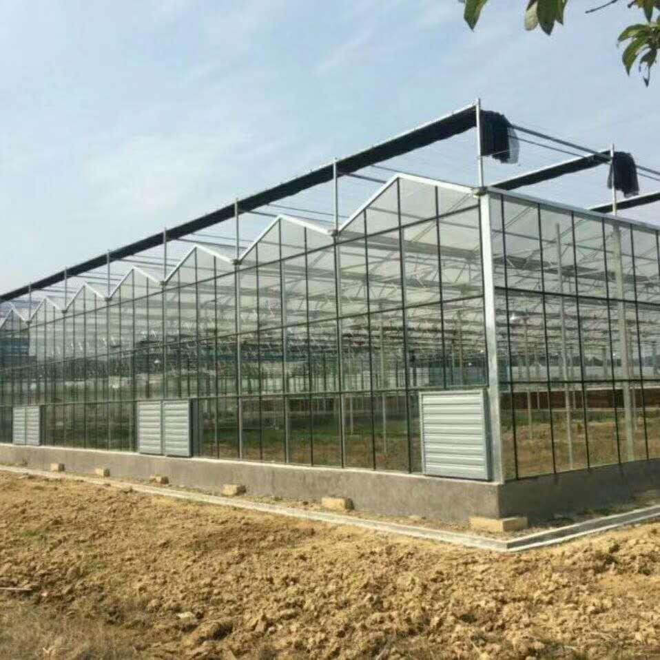 玻璃溫室廠家-結實耐用的玻璃溫室哪里有