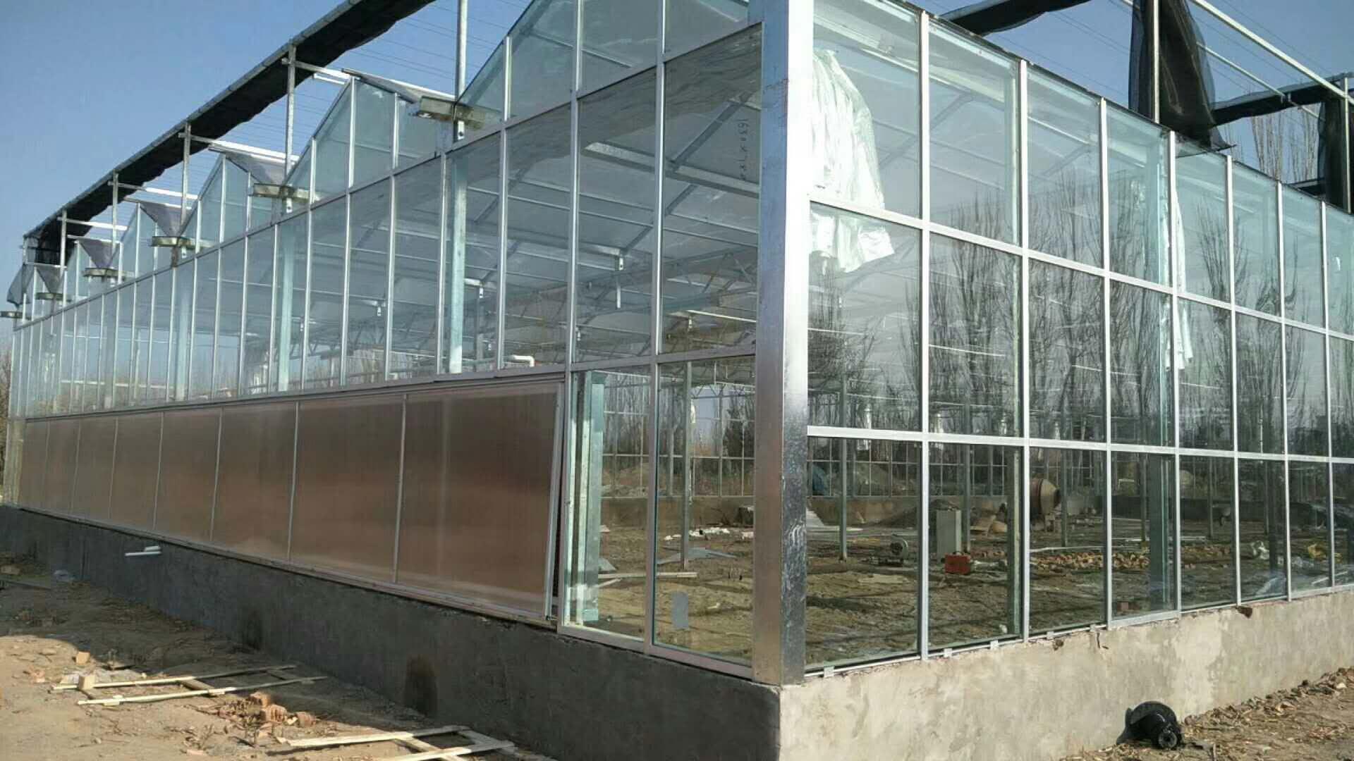 育苗玻璃大棚_专业靠谱的玻璃温室推荐