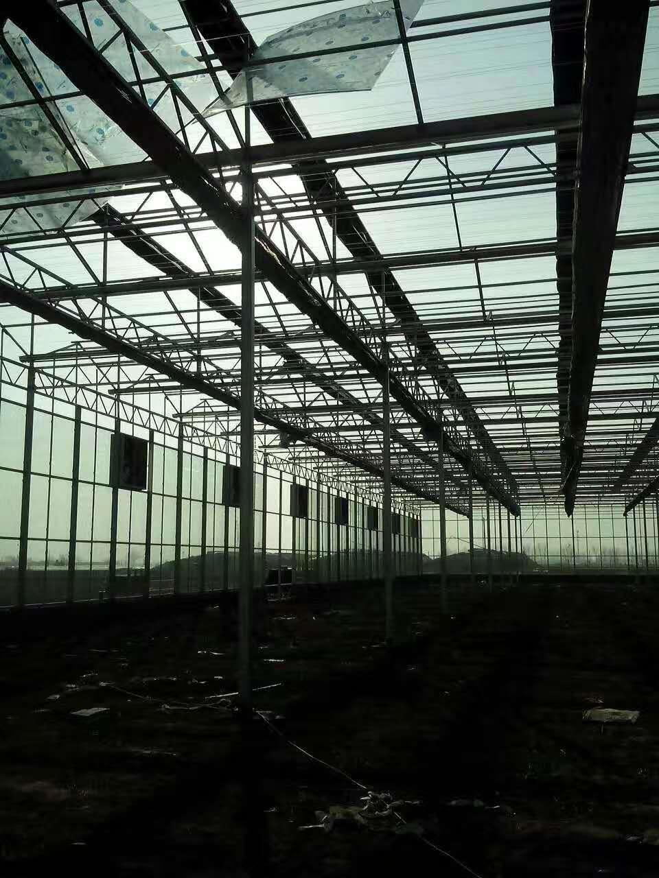 生態玻璃大棚設計-玻璃溫室建造費用