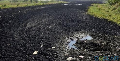 沈阳活性污泥厂家-哪儿有专业的活性污泥合作