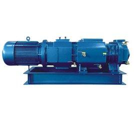 廈門真空泵,螺桿式真空泵,螺桿式真空泵廠商