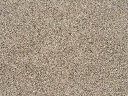 沙子价格|高性价沙子尽在沈阳市浑南区益安利信建材