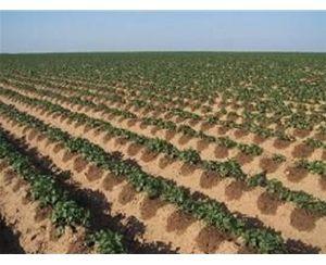 选购质量好的宁夏节水灌溉设备当选宁夏至润嘉禾节水设备|乌海节水灌溉设备