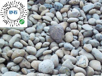 新品河卵石-哪里可以买到新款河卵石