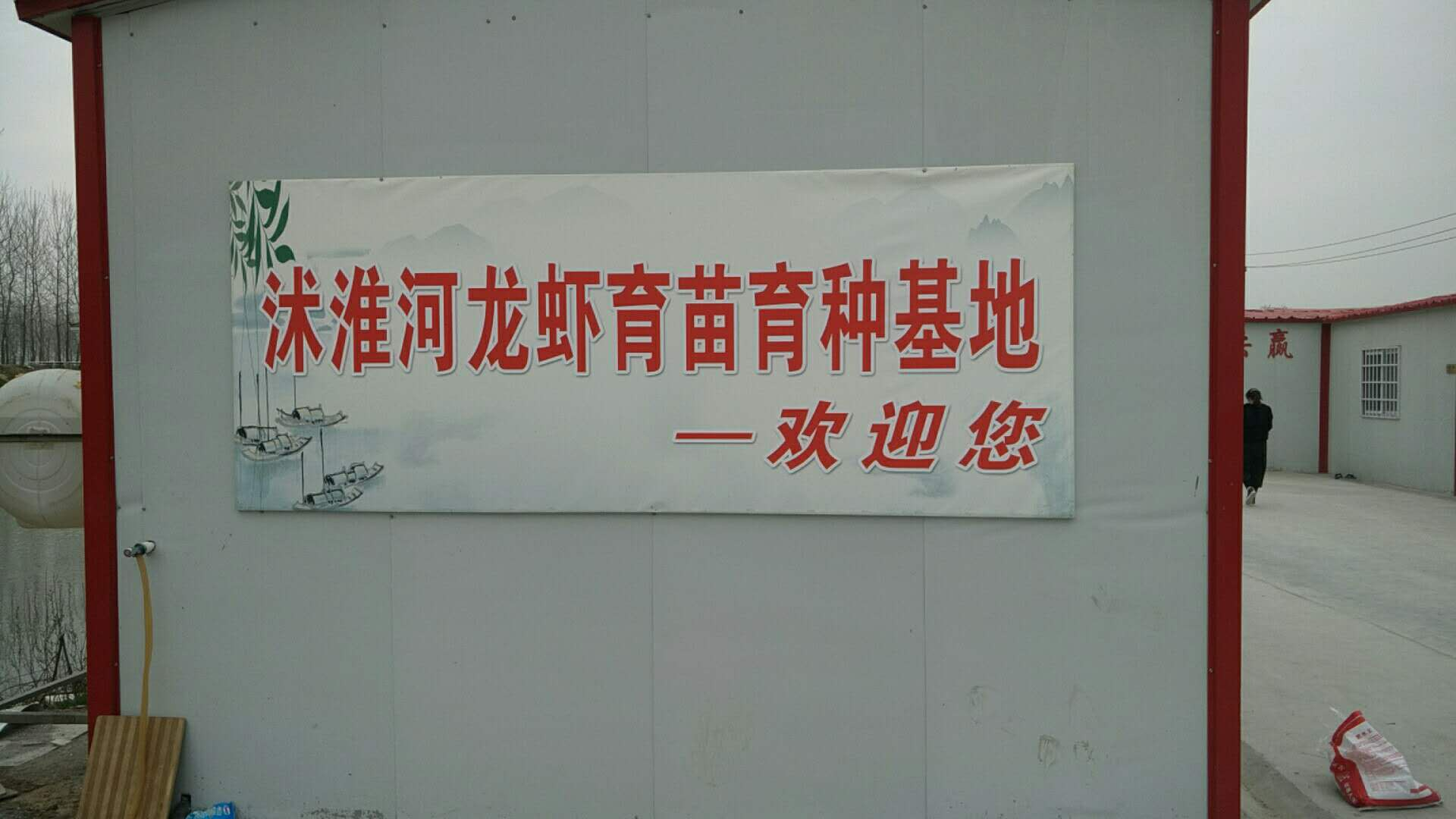 新疆好的龙虾苗_千耀农产品销量好的龙虾苗供应