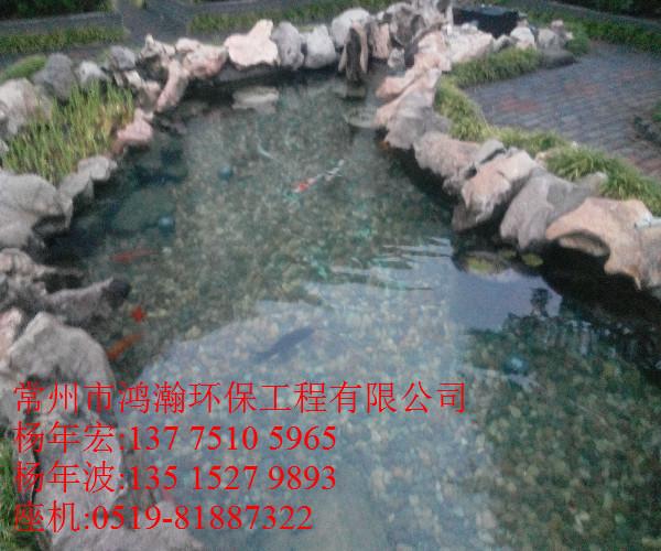 高淳市别墅户外景观鱼池生物净化工程