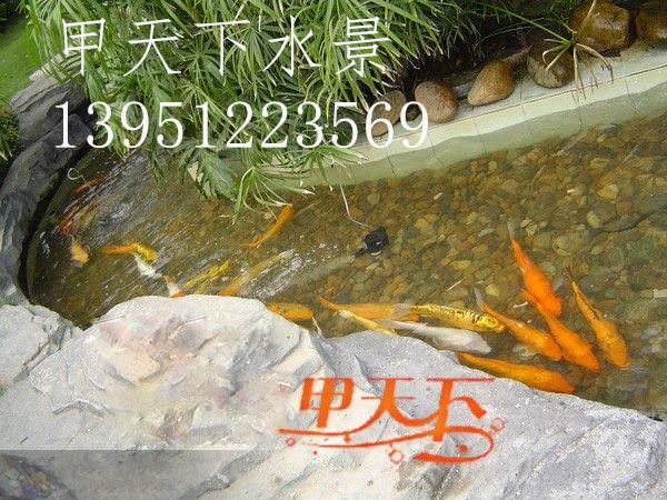 上海市【锦鲤鱼池过滤】专业解决水浑浊、发绿问题!