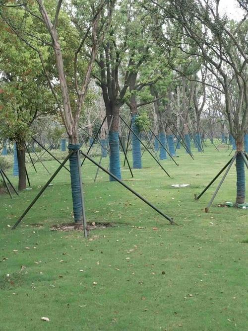河南大树保温棉-郑州地区有品质的保温棉